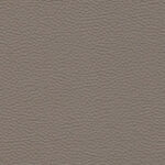 Pacific Taupe 103